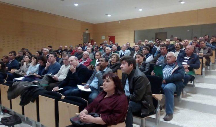 i9Kiwi no seminário Kiwi – Desafios da Fitossanidade